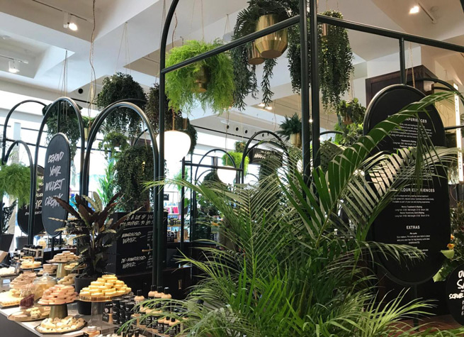 retail interior decorated with artificial plants
