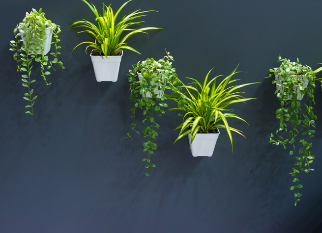 wall decor featuring artificial plants in pots