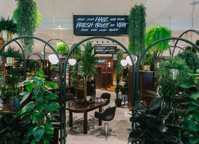 shop decor featuring artificial plants