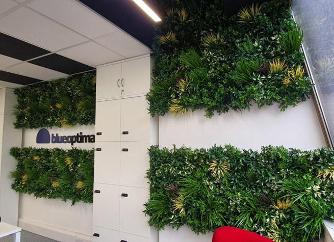 interior green wall with blue optima logo
