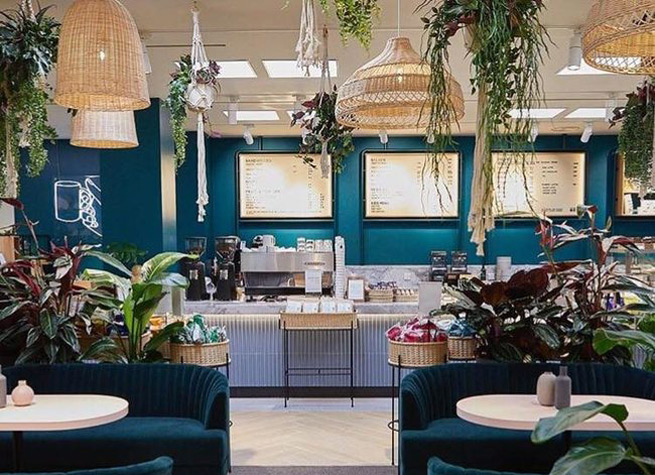 cafe interior with artificial plants
