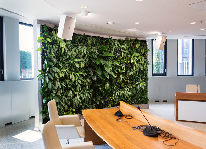 wall of artificial plants as office room divider