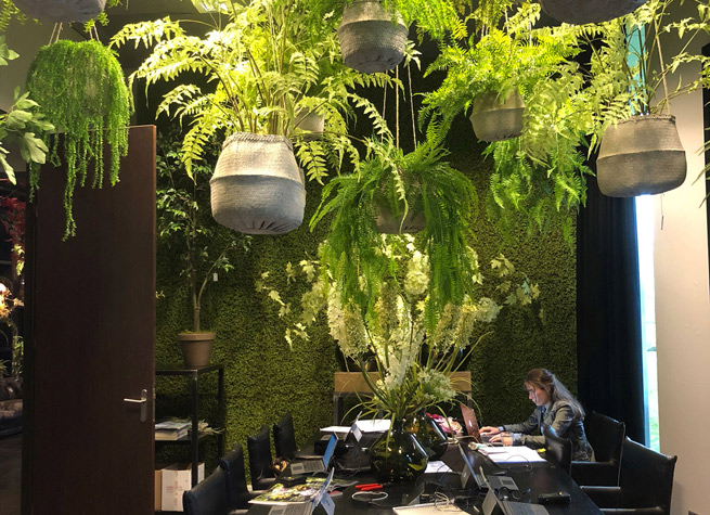 workspace design with artificial plants
