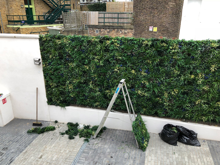 artificial hedge in Notting Hill