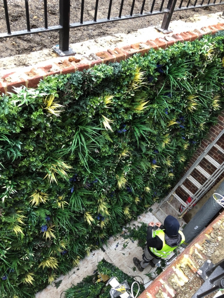 artificial green wall in light well